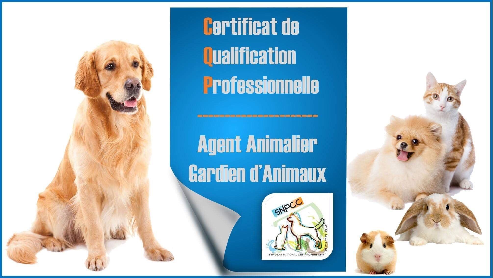 CQP Agent Animalier – Gardien d'Animaux