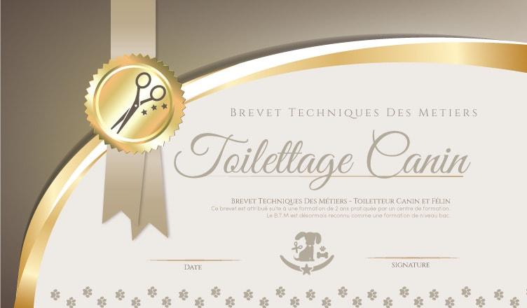 BTM Toiletteur canin et félin : La Cité de la Formation
