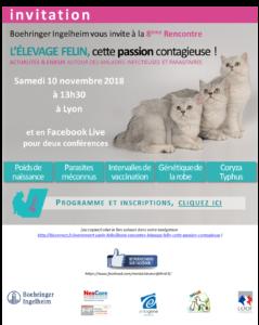 8ème rencontre éleveur «Élevage Félin, cette passion contagieuse»