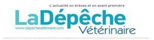 Colliers électriques : les associations vétérinaires britanniques disent non