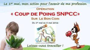 Opération «Coup de poing SNPCC» du 01 au 08 mai, sur le site LE BON COIN